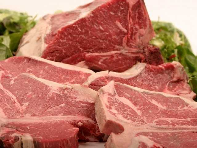 The Benefits of Having Protein Food in Your Diet